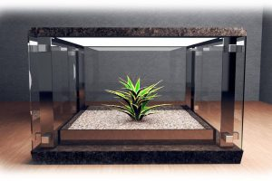 enclosed-glass-table-w-plant-22_1_orig