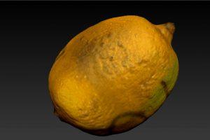zbrush-lemon-mesh-7-texture-1-orig_orig