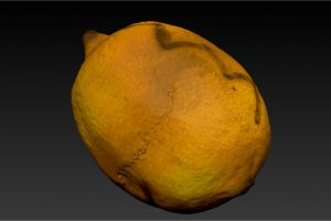 zbrush-lemon-mesh-8-texture-2-orig